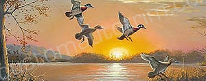 Wood Ducks at Sunrise Rear Window Graphic