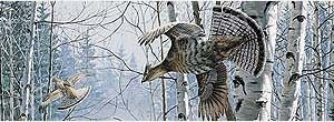 Ruffed Grouse in Woods Rear Window Graphic