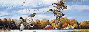 Mallards in Autumn Rear Window Graphic