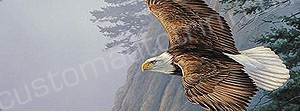 Eagle Cloudy Sky Rear Window Graphic