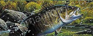 Jumping Smallmouth Bass Rear Window Graphic