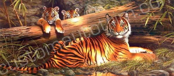 Hautman Quiet Fire Tigers Rear Window Graphic