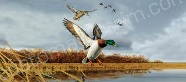 Hautman Mallard Flock Rear Window Graphic