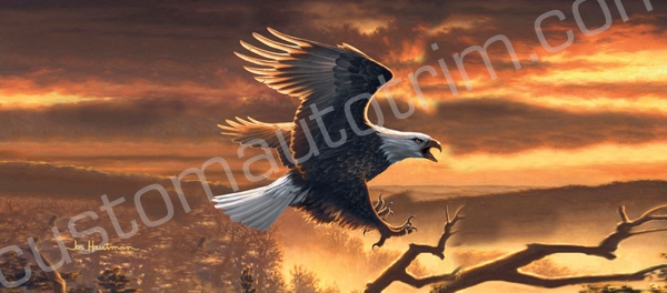 Hautman Sunset Eagle Rear Window Graphic