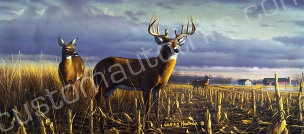 Deer Rear Window Graphics RWG1188
