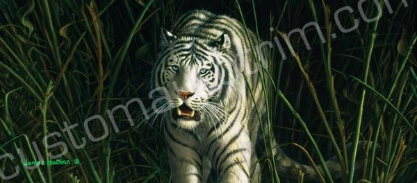 Hautman White Tiger Rear Window Graphic