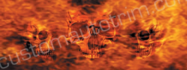 Skulls on Fire Rear Window Graphic