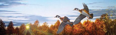 Autumn Home Wood Duck Rear Window Graphic