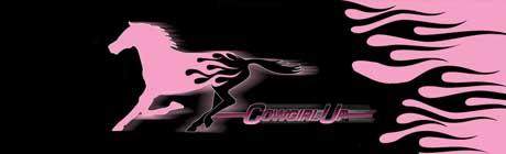 Cowgirl Up Pink Horse Flame Rear Window Graphic