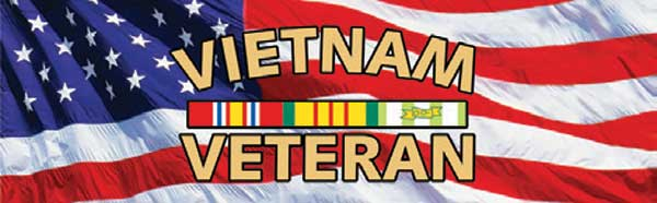 Vietnam Veteran Service and American Flag Rear Window Graphic