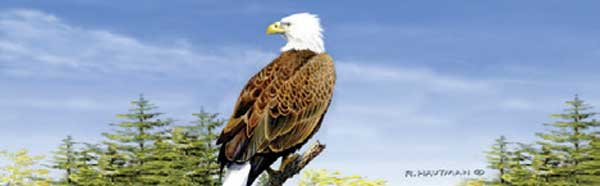 EAGLE ON PERCH Rear Window Graphic
