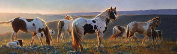 HORSES AT DAWN Rear Window Graphic