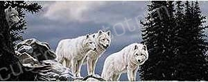 White Wolves Rear Window Graphic