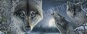 Wolf Howling at the Moon Rear Window Graphic