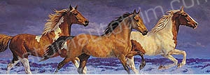 Horses at the Ocean Rear Window Graphic