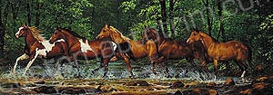 Horses in Creek Rear Window Graphic