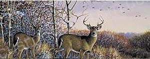Deer Rear Window Graphics RWG978