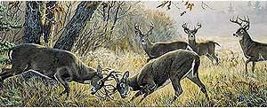 Deer Rear Window Graphics RWG979