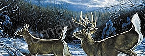 Deer Rear Window Graphics RWG986