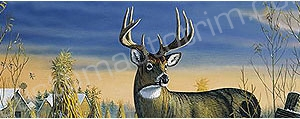 Deer Rear Window Graphics RWG988