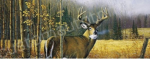 Deer Rear Window Graphics RWG989